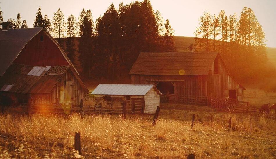 田舎に移住した写真